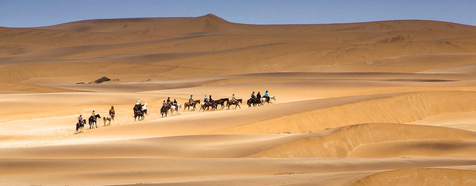 luxury namibian safari